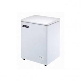 라셀르 아이스크림 냉동고 BD-100